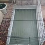 Клетка для кролика 100*60*50, Новосибирск