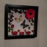 Тропические бабочки в рамке. Панно из бабочек, Новосибирск