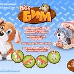 Собака говорящая Бим, Новосибирск
