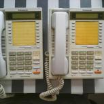 Продам телефоны Panasonic KX-T2261X, Новосибирск