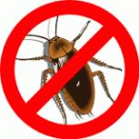Травим тараканов клопов клещей муравьев, Новосибирск
