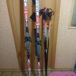 Лыжи, Новосибирск