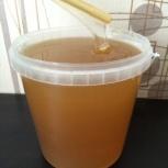 Натуральный мёд сибирский с личной пасеки, Новосибирск