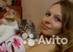 Няня для кошек, Новосибирск