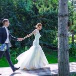Студия свадебного видео Елены Василенко, Новосибирск