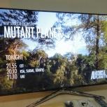 Куплю рабочий телевизор - LCD или плазменную панель, Новосибирск