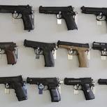 Куплю  винтовку или пистолет, Новосибирск