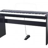 Artesia A-10 Black polished Цифровое фортепиано, Новосибирск