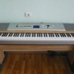 Цифровой синтезатор, Новосибирск