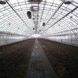 Продам тепличное хозяйство, Новосибирск