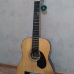 Шестиструнная гитара, Новосибирск