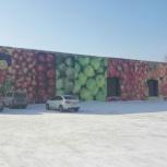 Рынок (фрукты и овощи оптом и в розницу), Новосибирск