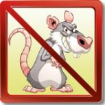 Уничтожение крыс и мышей с помощью  профессиональной химией, Новосибирск