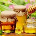 Продам свежий мёд, Новосибирск