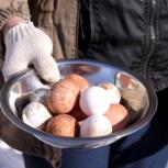 Продам инкубационные яйца, Новосибирск