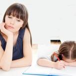 Диагностика знаний для школьников 1-9 классов, Новосибирск