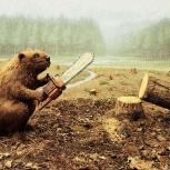 Спил снос деревьев, обрезка веток, спиливание, вывоз, Новосибирск