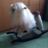 лошадка-качалка, Новосибирск