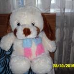 мягкая игрушка-собачка, Новосибирск
