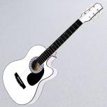 Гитара Амистар Н-32, Новосибирск