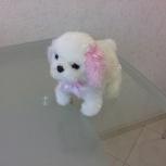 Продам интерактивную собаку, Новосибирск