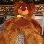 Продам большого медведя, Новосибирск