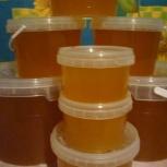 Мёд Алтайский свежий с доставкой, Новосибирск