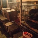 Клетки для кроликов, Новосибирск