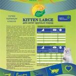 LiveRa Kitten Large, для котят и кормящих кошек крупных пород, Новосибирск