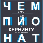 Услуги freelance, Новосибирск