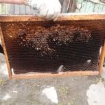 Инвентарь пчеловода, Новосибирск