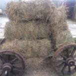 Продам сено, солому в брикетах, Новосибирск