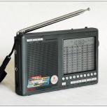 Degen 1103 DE-1103 Всеволновый радиоприемник, Новосибирск