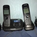 Радиотелефон Panasonic KX-TG 6521RU, Новосибирск
