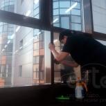 Тонирование офисов, окон, балконов (качественно, с гарантией), Новосибирск