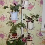 Подставка под цветы, Новосибирск
