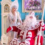 Дед Мороз и Снегурочка на дом, в офис, садик, школу., Новосибирск