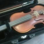 Скрипка 4/4, Новосибирск