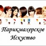 Обучение парикмахерскому делу, Новосибирск