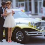 Свадебный фотограф. Фотограф на свадьбу, Новосибирск