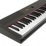Цифровое фортепиано Artesia PA-88W, Новосибирск