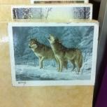 Картины. Раскраска по номерам, Новосибирск