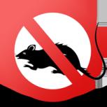 Дератизация. Уничтожение крыс быстро и качественно, Новосибирск