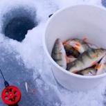 Рыбалка на обском водохранилище на снегоходе в Новосибирске, Новосибирск