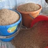 Комбикорма. Пшеница. Отруби. Ракушечник, Новосибирск