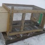 Продам клетки для кроликов, Новосибирск
