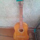 Гитара, Новосибирск