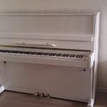Пианино Рифей, Новосибирск