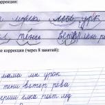Коррекция почерка - обучение преподавателя, Новосибирск