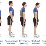 Провожу тренировки для укрепления мышц спины., Новосибирск